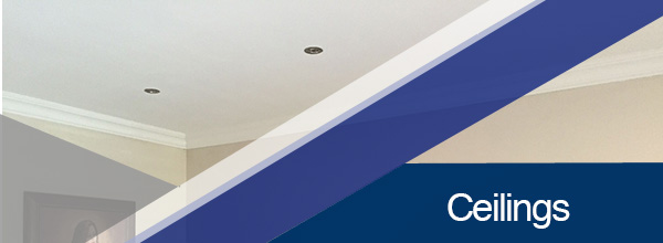 Universal Roofing - Ceiling Services