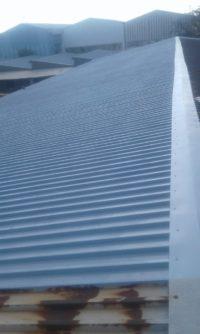Steel Roof painting