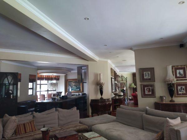 Interior Ceiling Repair Lounge